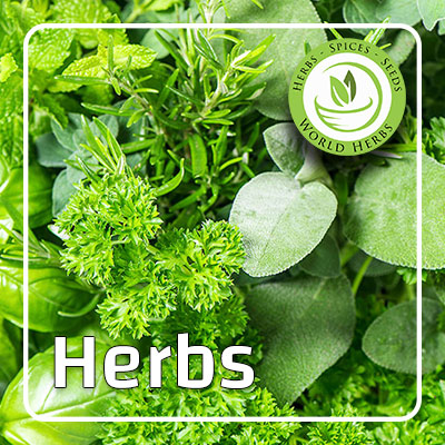 Herbs_Categry